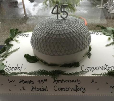 Bloedel 45th Anniversary cake