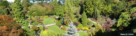 Large Quarry Garden at Queen Elizabeth Park